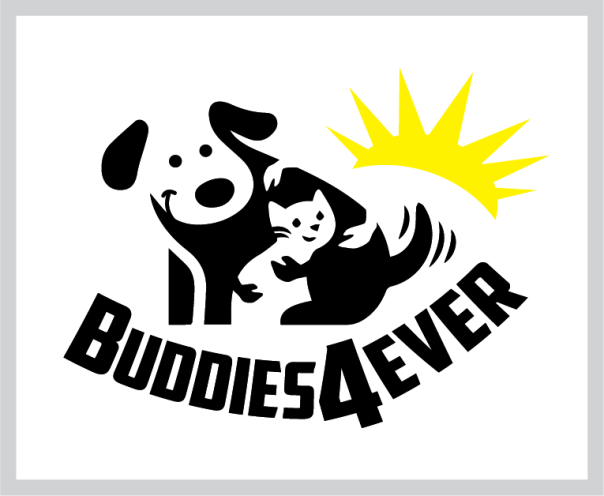 buddies 4 ever non profit logo design sponsor by tshirtprinting.co.za