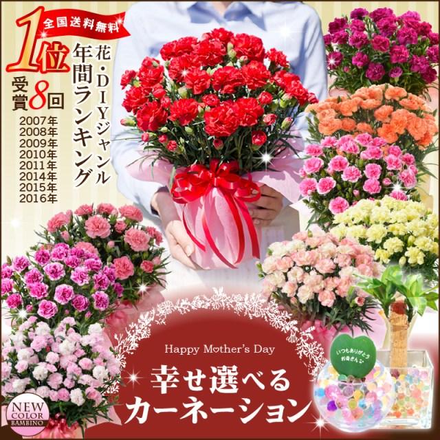 「【母の日】カーネーション鉢植えギフト!選べる花色とお母さんも大満足の幸せ特典がいっぱい」を楽天で購入