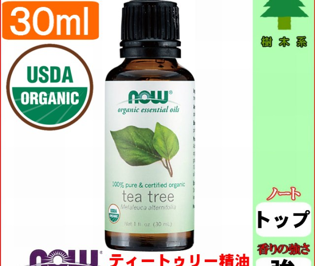 Organic Tea Toe Lee Essential Oil  Ml Tea Tree Oil Tea Tolly Existence Machine Now Essential Oil Aroma Oil Hay Fever Measures Goods