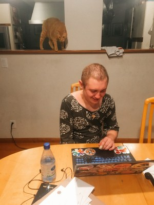A graduate student works on their computer while their ginger cat looks on.