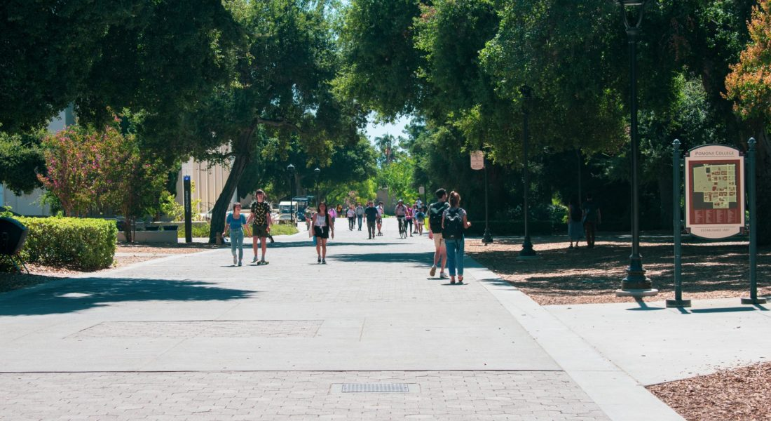 Students walk down a concrete path surrounded by trees