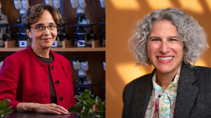 A composite image of two female college professors.