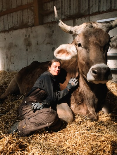 A woman wearing brown overalls sits next to a giant cow with big horns.
