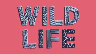 WILD-LIFE-LOGO-LONG