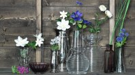 collection-of-vases-with-assortment-of-wild-flowers