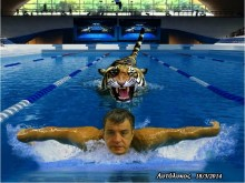 ΝΕΟ ΓΚΑΛΟΠ:  Και πρωταθλητής σε 25ρα πισίνα ο Σταύρος ο ποτάμης!!!