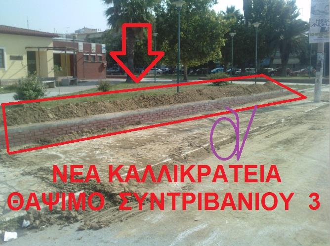ΝΕΑ ΚΑΛΛΙΚΡΑΤΕΙΑ -ΘΑΨΙΜΟ ΣΥΝΤΡΙΒΑΝΙΟΥ 3