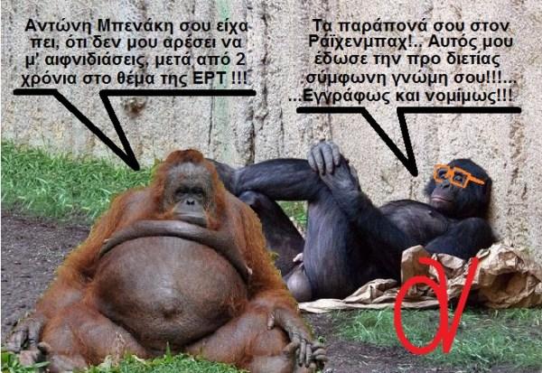 ΣΑΜΑΡΑΣ -ΒΕΝΙΖΕΛΟΣ -ΜΑΪΜΟΥΔΕΣ