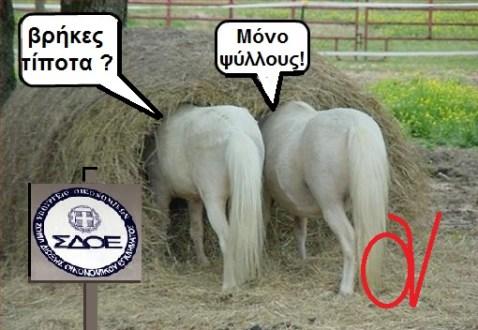 ΣΔΟΕ -ΨΥΛΛΟΙ ΣΤ ΑΧΥΡΑ