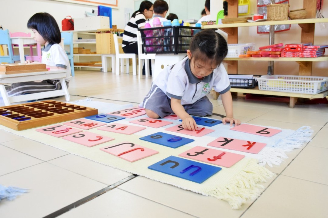 language - Sand paper letter match with Large Moveable alphabet