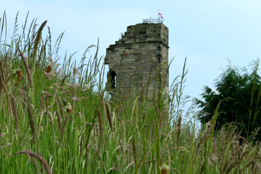 The White Lady of Tutbury - North Tower weeds - Lucie Robinson