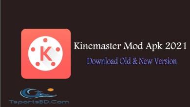 Kinemaster Mod Apks