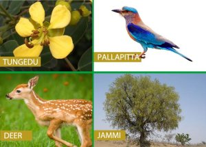 Telangana State Animal , Bird , Tree and Flower