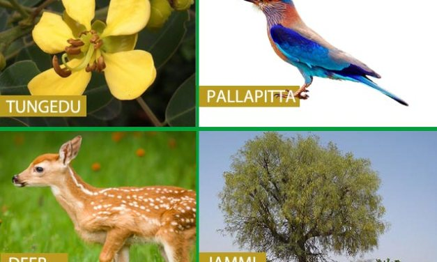 Telangana State (TS) Symbols – Animal , Flower, Tree, Bird etc.