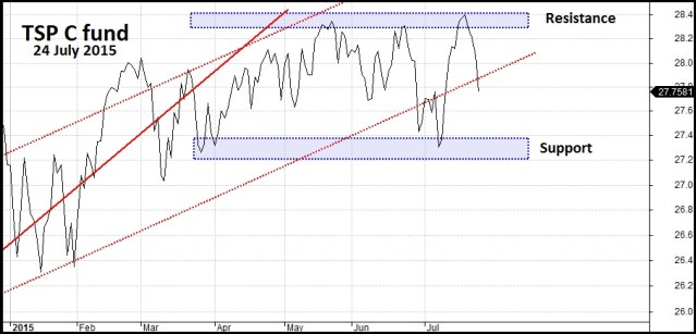 TSP C Fund Area of Support