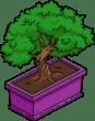 bonsai_menu