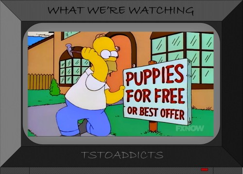 Greyhound Puppies Simpsons 2