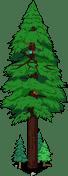 World's_Largest_Redwood