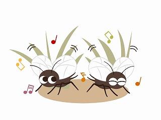 秋 虫 鳴き声