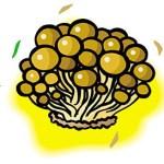 ビタミンDの食べ物一覧。野菜や果物、納豆に多いの?サプリメントもいいかも!