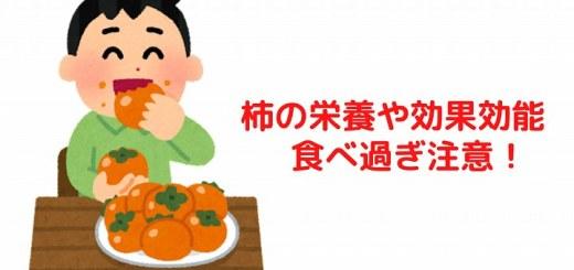 柿 栄養 効果効能
