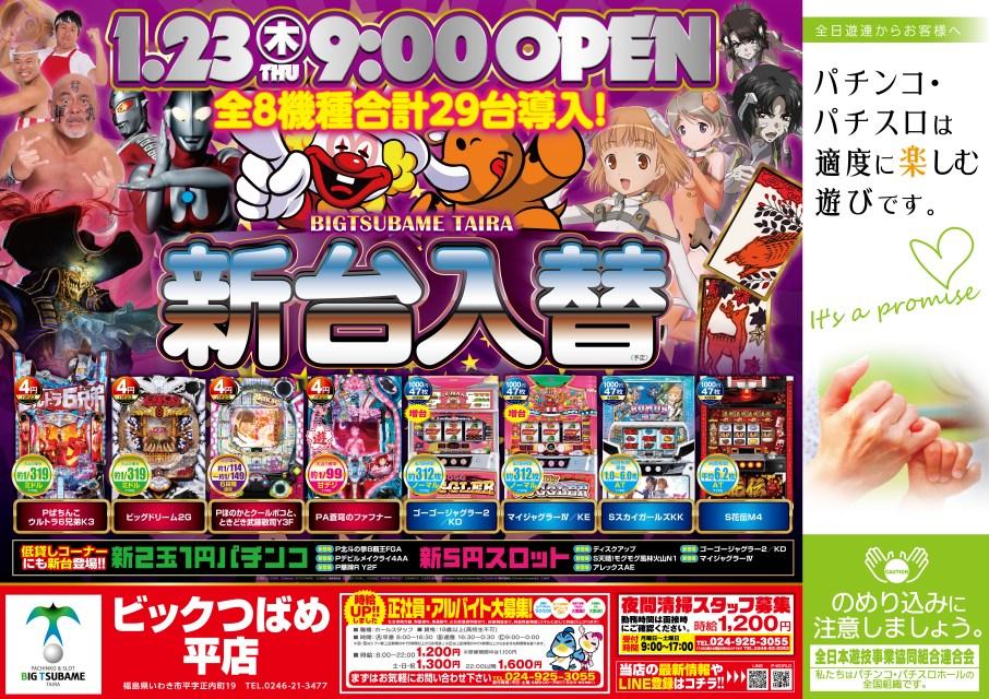 bigtsubametaira200123B3shufoo