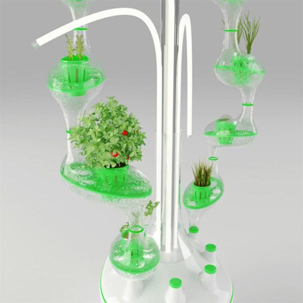 都市型水耕栽培1