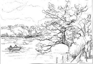 スケッチのコツ 桜と池のある風景 大人の塗絵: 塗り絵で癒し 風景画 花の絵