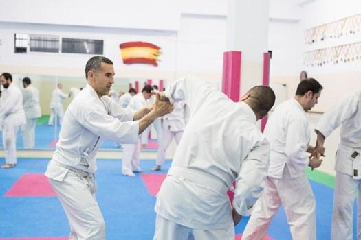aikido para principiantes