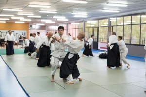 seminario de aikido valencia