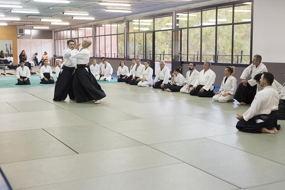 seminario de aikido practicando