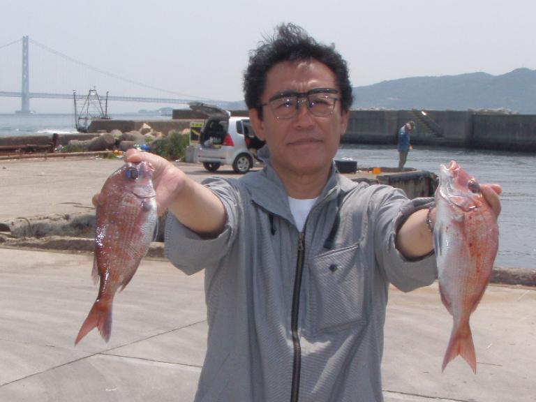 5月11日(木)の釣果(マダイ・ガシラ)