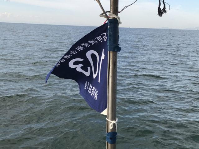 明石タコ釣り2019/5/1~8/31の平日ご予約受付開始します