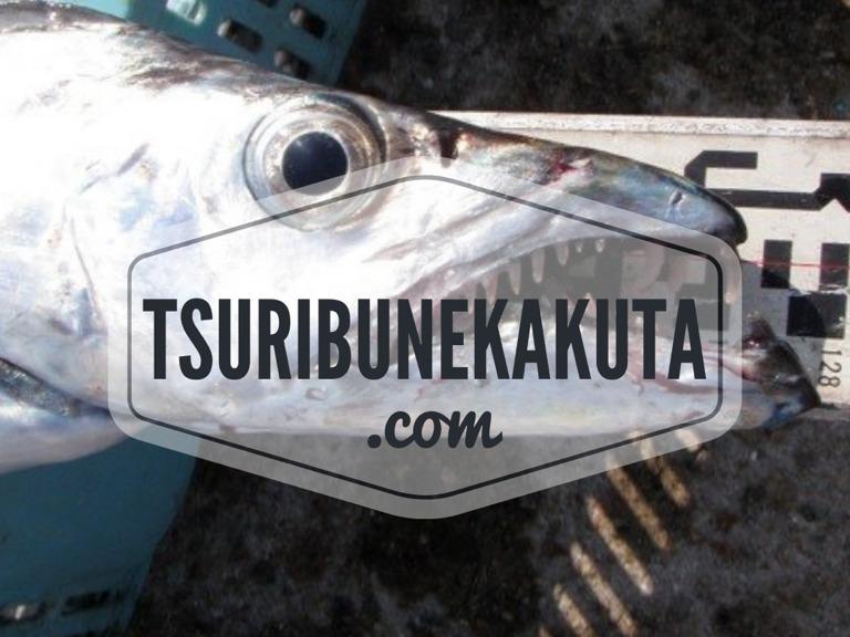 タチウオ釣りで太刀魚テンヤ釣りやジギングのお誘い!!