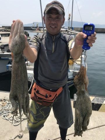 2019-8-3-マダコ3.2kgと3.1kg