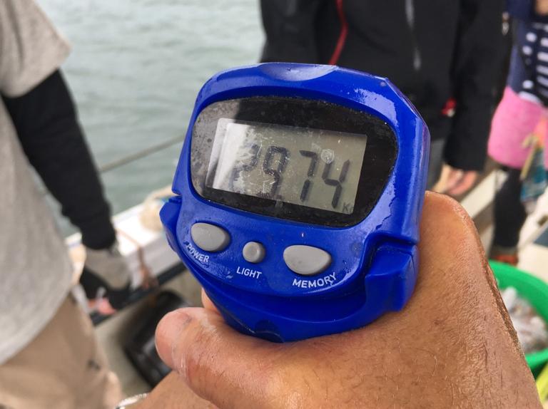 2020-6-25-マダコ釣果68杯で総重量29.74kg
