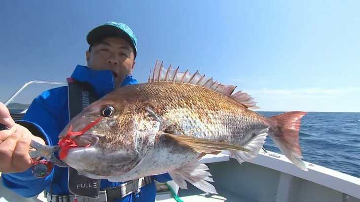 【釣り百景】#289 鯛ラバと歩む釣り人生 三国モンスターに挑む