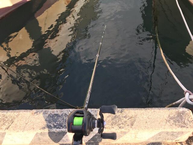 タコエギロッドでタコ釣り