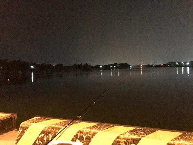 漁港で釣りをしているところ