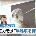 「矢カモメ」事件、70代男性宅を家宅捜索/石巻