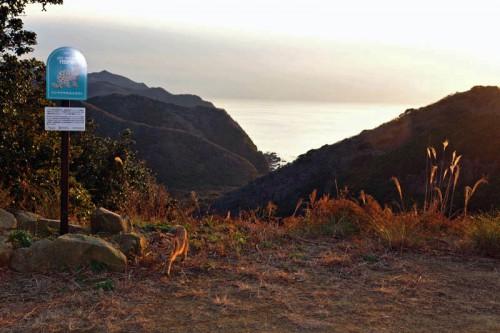 財)日本生態系協会によるトラスト運動も加わって設置されたヤマネコ保護区の看板