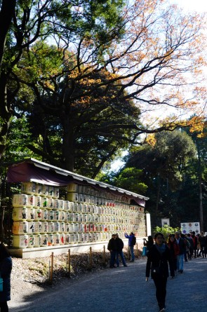 barrels of sake along the path to the shrine
