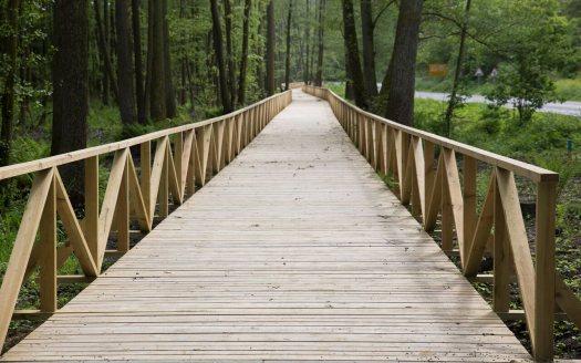 Juodkrantė, dviračių takas, medinis tiltas 4345