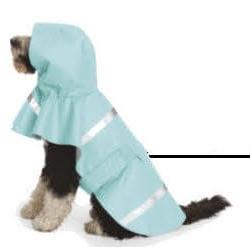 dog with pale blue raincoat