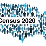 Complete the Census Online