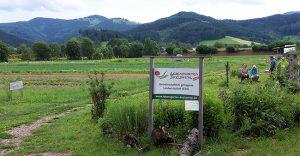 Mitgärtnern bei solidarischer Agrikultur im Dreisamtal @ Lebensgarten Dreisamtal
