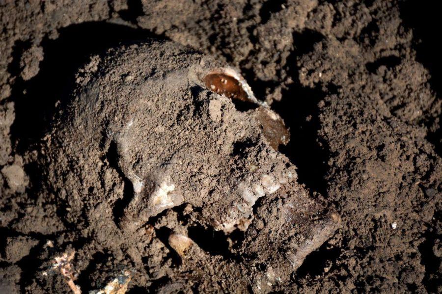 isis skull