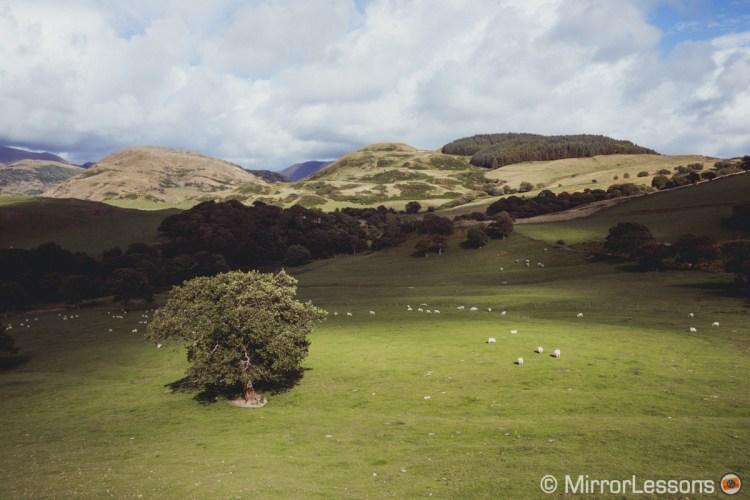 Wales © Mathieu Gasquet