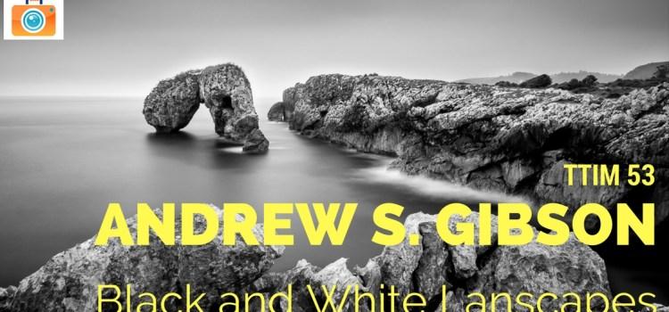 TTIM 53 – Andrew S. Gibson