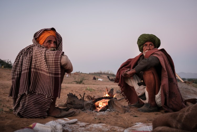 PUSHKAR, INDIA - CIRCA NOVEMBER 2016: Camel herders by a fire pit early morning in the Pushkar Camel Fair grounds. It is one of the world's largest camel fairs. Apart from the buying and selling of livestock, it has become an important tourist attraction.